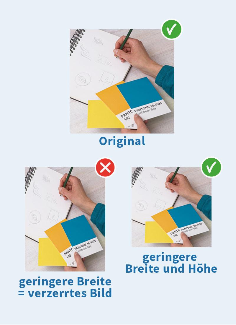 Bilder proportional verkleinern für optimales Ergebnis auf der Webseite